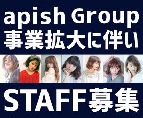 アピッシュグループ求人求人情報